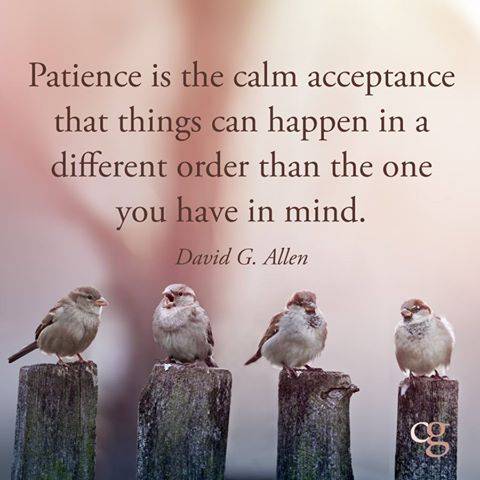 Patience is the calm acceptance that things can happen in a different order than you have in mind-David G Allen