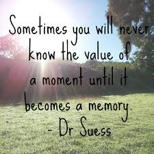 Sometimes you will never know the value of a moment until is becomes a memory - Dr Suess