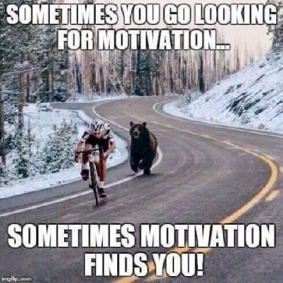 Sometimes you go looking for motivation - sometimes motivation finds you!